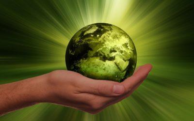 Médecine Environnementale : Les journées de l'AMSES