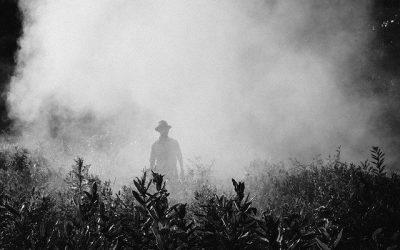 """Formation """"Pesticides  et maladie professionnelle"""""""